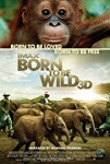 Born to Be Wild Movie Poster